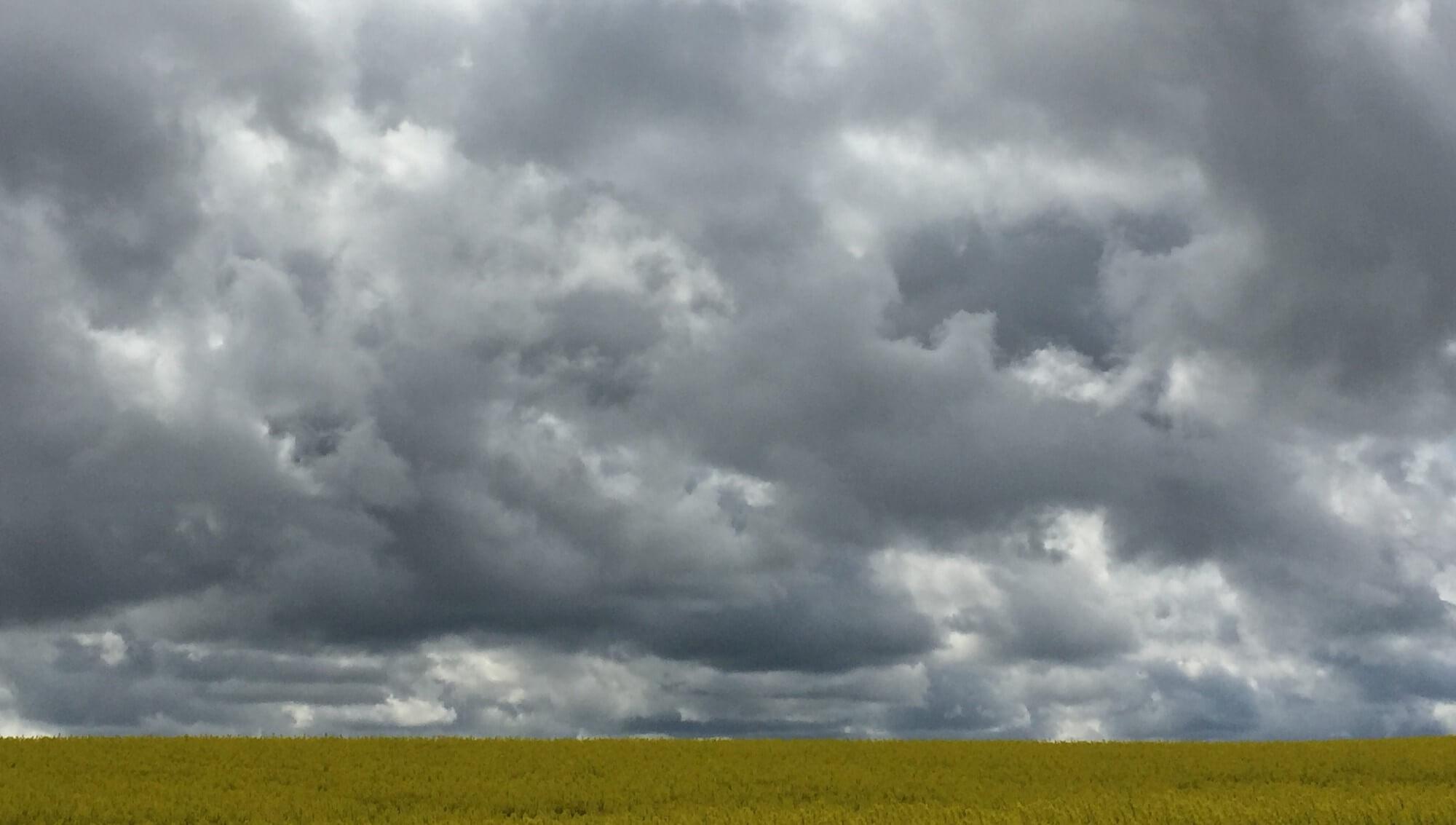 kornmark tunge skyer