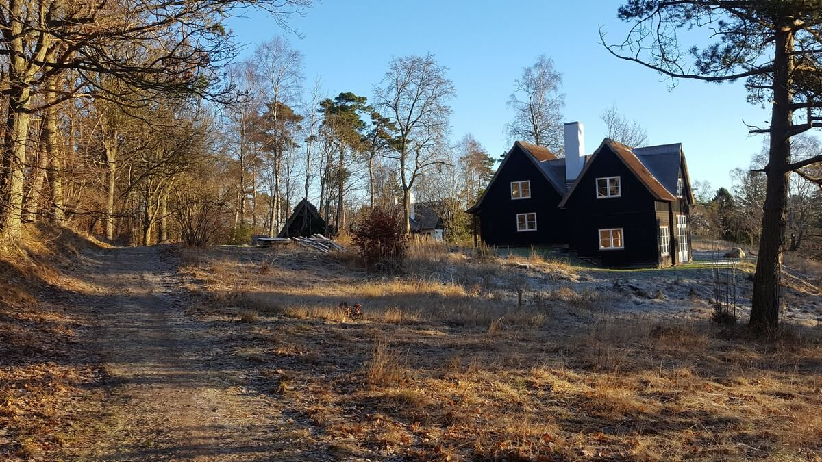 hus i skoven
