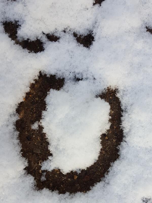 aftryk af hestsko i sneen