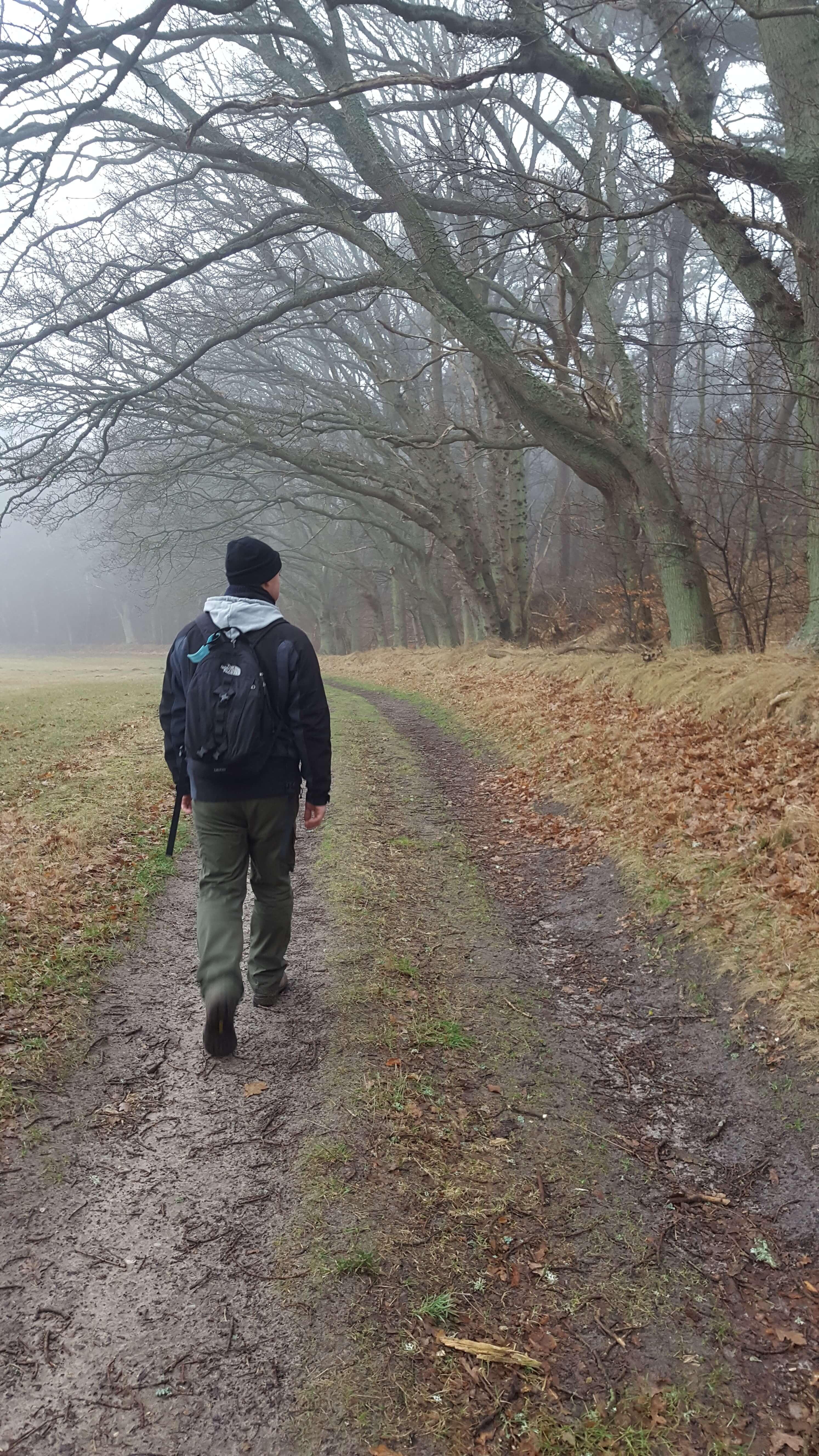 ensom vandrer i skoven om vinteren