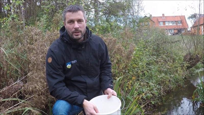 Naturforvalter i Gribskov Kommune