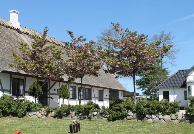Bindingsværket er bevaret i Mårums præstegård